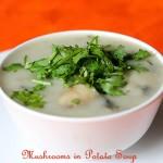 Mushrooms In Potato Soup, How to make Mushrooms Potato Soup recipe