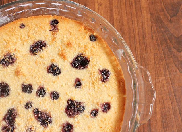 Vegan Coconut Bluberry Cake
